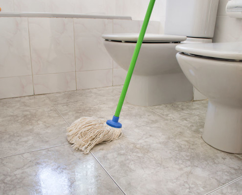 Bathroom Cleaning Mop